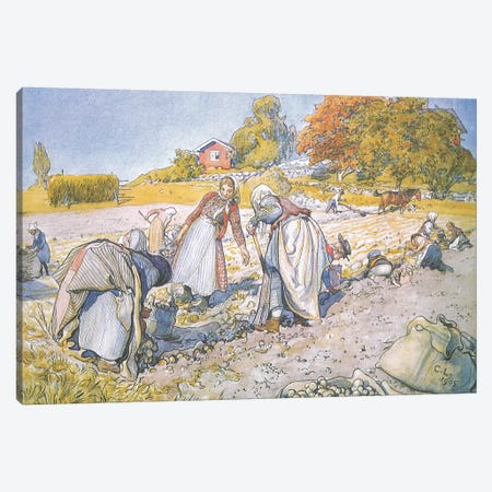 The children filled the buckets and baskets with potatoes Canvas Print #BMN9431} by Carl Larsson Canvas Wall Art