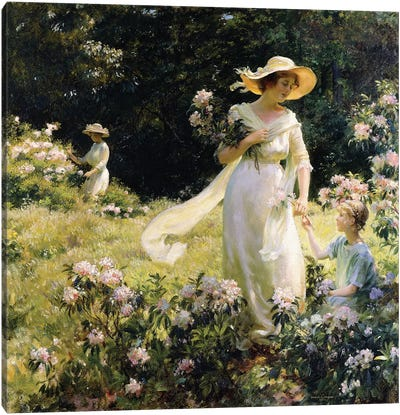 Among the Laurel Blossoms, 1914 Canvas Art Print