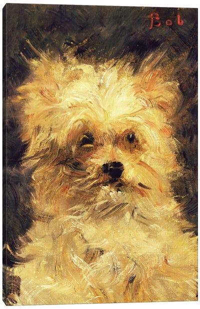 "Head of a Dog - ""Bob"", 1876 Canvas Art Print"