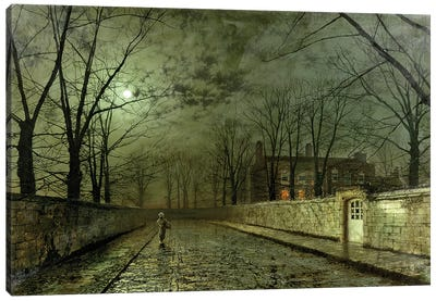 Silver Moonlight Canvas Art Print