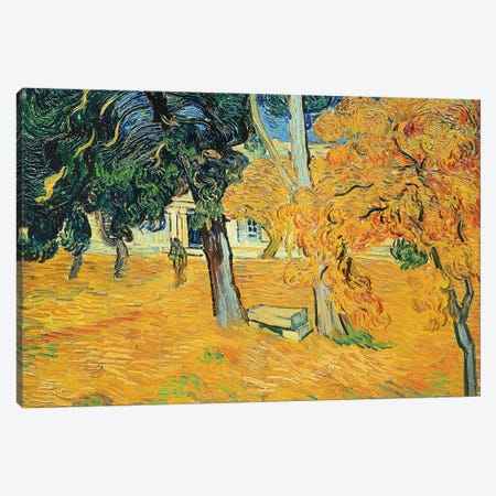 The Park at St. Paul's Hospital, St. Remy, 1889 Canvas Print #BMN9559} by Vincent van Gogh Art Print