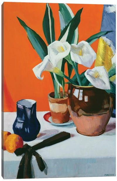 Arum Lilies  Canvas Art Print