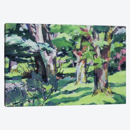 Trees at Auchinleck, Ayrshire  Canvas Print #BMN9628} by Francis Campbell Boileau Cadell Canvas Art Print