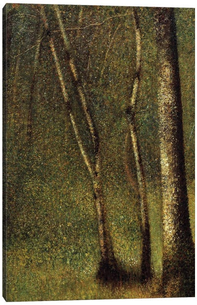 In the woods at Pontaubert or the Forest at Pontaubert, 1881. Canvas Art Print