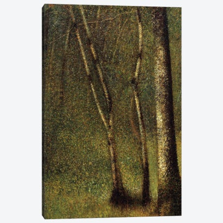In the woods at Pontaubert or the Forest at Pontaubert, 1881. Canvas Print #BMN9644} by Georges Seurat Canvas Art