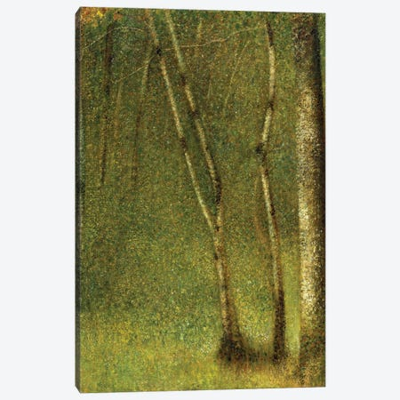 The Forest at Pontaubert, 1881  Canvas Print #BMN9652} by Georges Seurat Canvas Wall Art