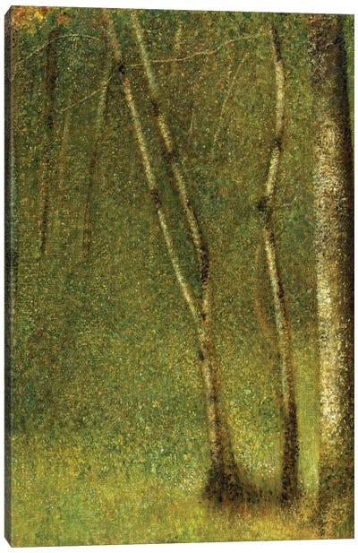 The Forest at Pontaubert, 1881  Canvas Art Print