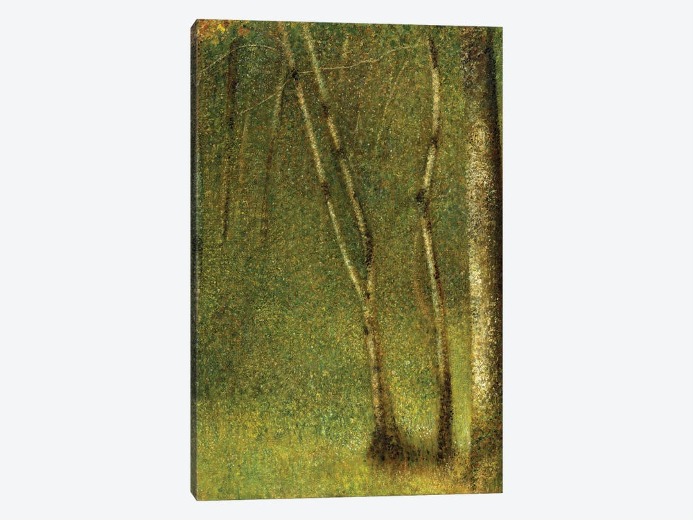 The Forest at Pontaubert, 1881  by Georges Seurat 1-piece Canvas Print
