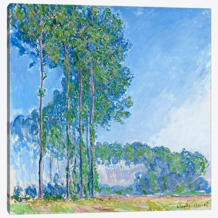 Poplars, 1891  Canvas Print #BMN965} by Claude Monet Canvas Art
