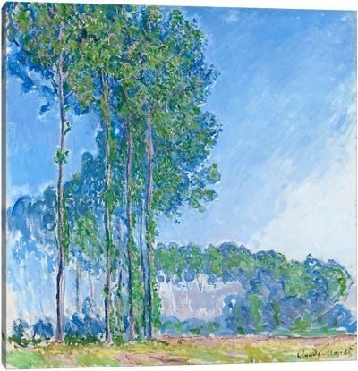 Poplars, 1891 Canvas Art Print