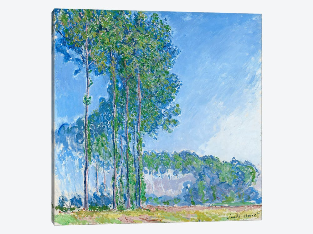 Poplars, 1891  by Claude Monet 1-piece Canvas Art