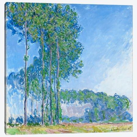 Poplars, 1891  Canvas Print #BMN965} by Claude Monet Canvas Art