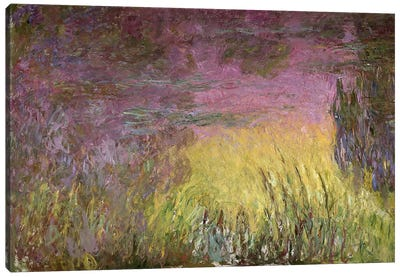 Waterlilies at Sunset, 1915-26 (oil on canvas) Canvas Print #BMN96