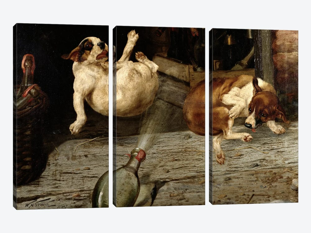 A Surprising Result, 1887  by William Henry Hamilton Trood 3-piece Canvas Artwork