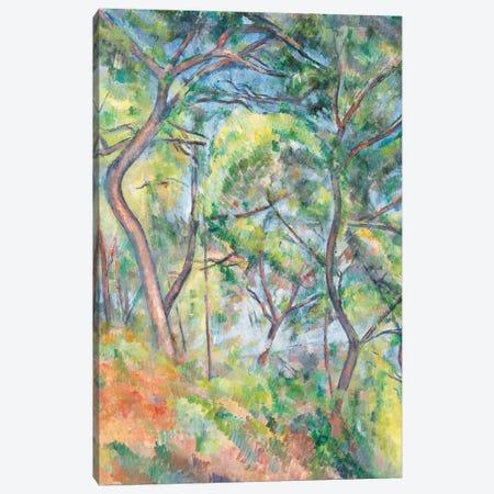 Sous-Bois, c.1894  Canvas Print #BMN9711} by Paul Cezanne Art Print