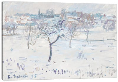 Snowy Landscape at Eragny with an Apple Tree, 1895  Canvas Art Print
