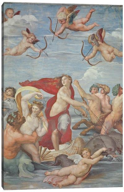 The Triumph of Galatea, 1513-14  Canvas Art Print