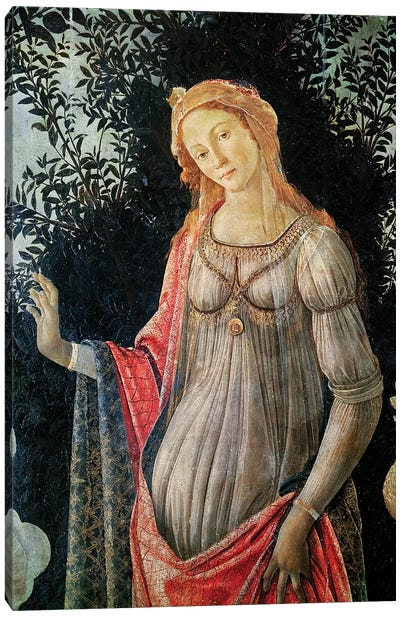 Primavera, detail of Venus, c.1478  Canvas Art Print