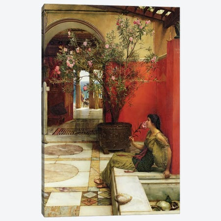 An Oleander, 1882  Canvas Print #BMN9812} by Sir Lawrence Alma-Tadema Canvas Artwork
