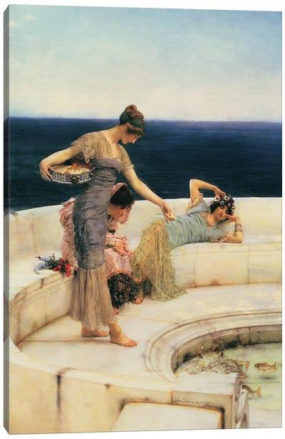 Silver Favourites, c.1903  Canvas Art Print