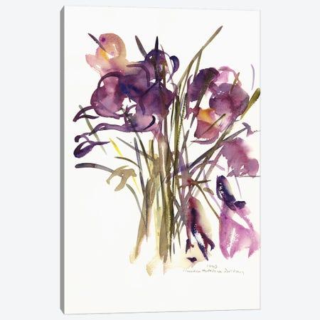 Crocus, 2003  Canvas Print #BMN9898} by Claudia Hutchins-Puechavy Canvas Artwork
