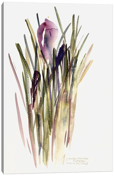 Crocus, 2003  Canvas Art Print
