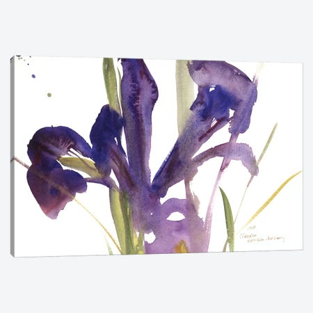 Iris, 1987  Canvas Print #BMN9904} by Claudia Hutchins-Puechavy Canvas Art Print