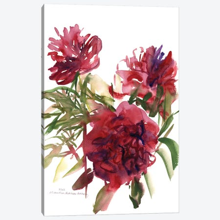 Peonies, 2002  Canvas Print #BMN9908} by Claudia Hutchins-Puechavy Canvas Wall Art