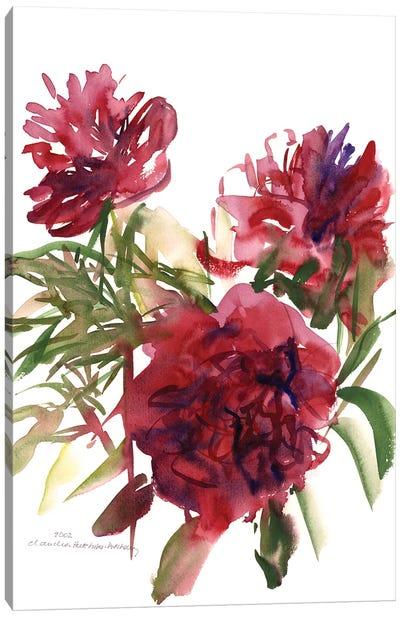 Peonies, 2002  Canvas Art Print