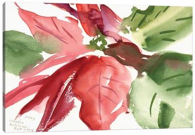 Poinsettia, 2003  Canvas Art Print