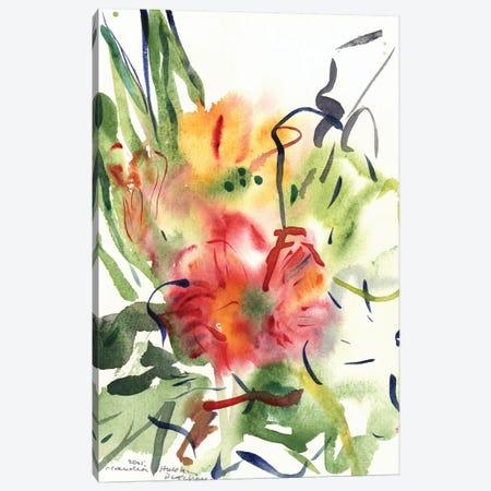 Primroses, 2005  Canvas Print #BMN9912} by Claudia Hutchins-Puechavy Canvas Print