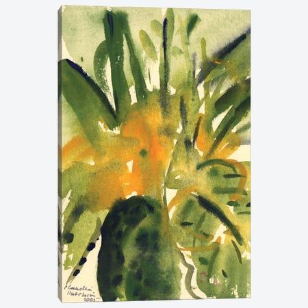 Primroses, 2005  Canvas Print #BMN9913} by Claudia Hutchins-Puechavy Art Print
