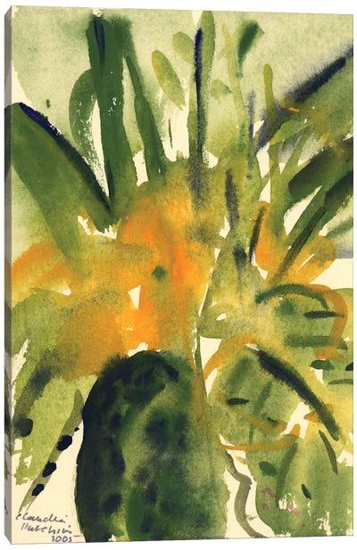 Primroses, 2005  Canvas Art Print