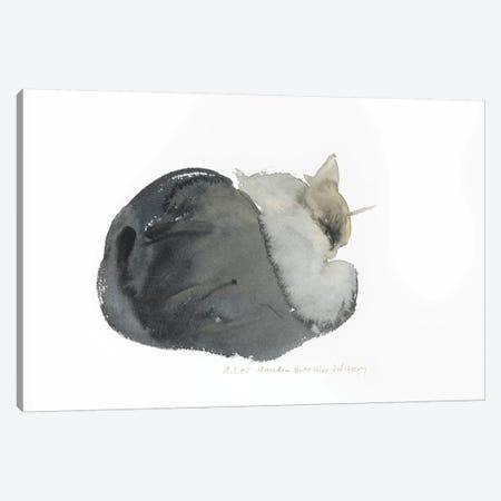 Sleeping Cat, 1985  Canvas Print #BMN9917} by Claudia Hutchins-Puechavy Canvas Art