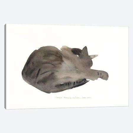 Sleeping Cat, 1985  Canvas Print #BMN9918} by Claudia Hutchins-Puechavy Canvas Print
