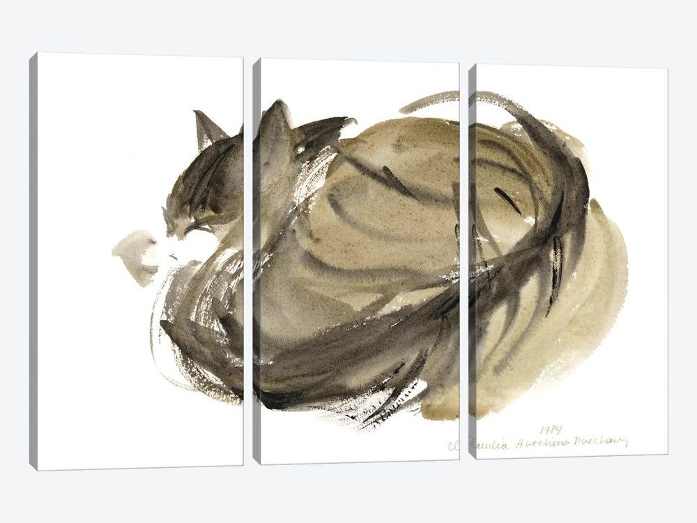 Sleeping Cat, 1985  by Claudia Hutchins-Puechavy 3-piece Canvas Art