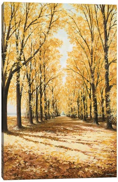 Falls Cathedral Canvas Art Print