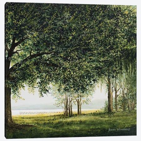 Lake Shore Drive II Canvas Print #BNA22} by Bruce Nawrocke Art Print