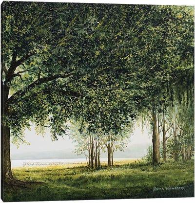 Lake Shore Drive II Canvas Art Print