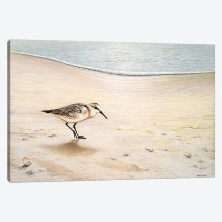 Morning Stroll Canvas Print #BNA26} by Bruce Nawrocke Canvas Wall Art
