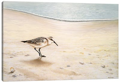 Morning Stroll Canvas Art Print