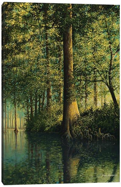 Peaceful River Canvas Art Print