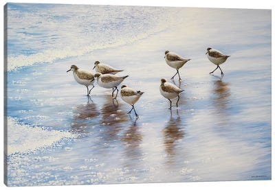 Sand Dancers Canvas Art Print