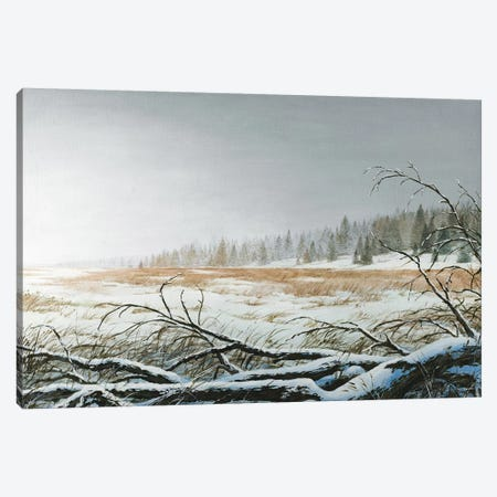 Snowy Morning Canvas Print #BNA43} by Bruce Nawrocke Canvas Print