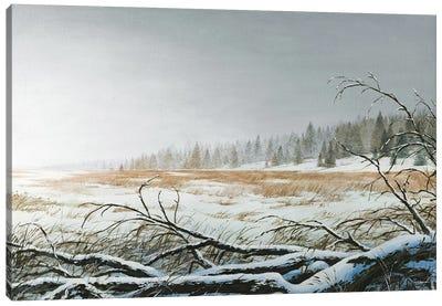 Snowy Morning Canvas Art Print