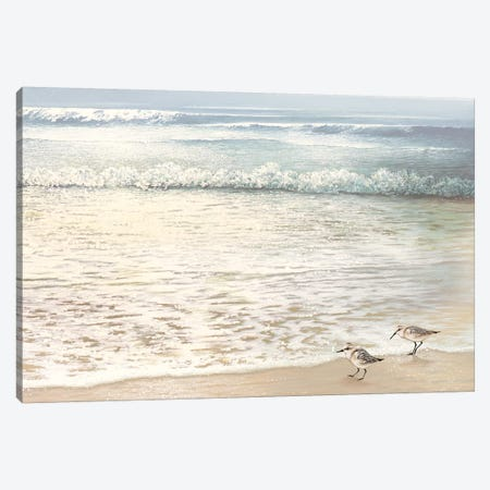 Strolling Along Canvas Print #BNA45} by Bruce Nawrocke Canvas Artwork