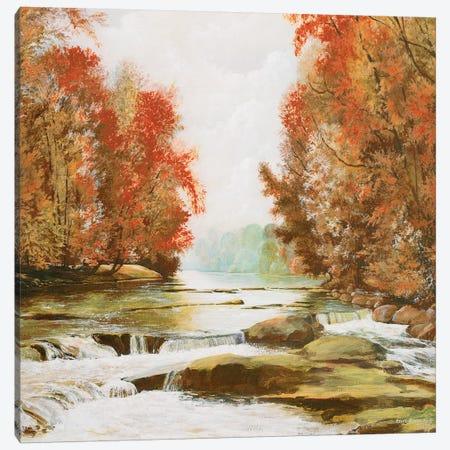 Autumn at Firemen's Park Canvas Print #BNA4} by Bruce Nawrocke Canvas Artwork