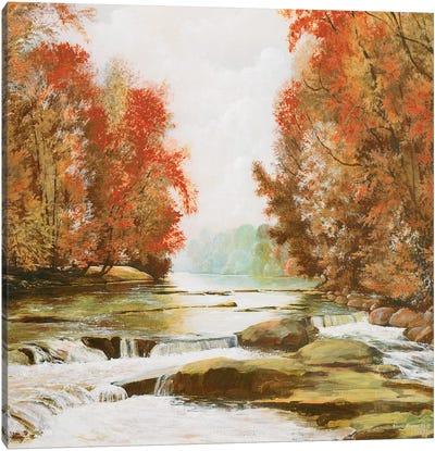 Autumn at Firemen's Park Canvas Art Print