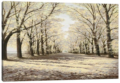 Winter Cathedral Canvas Art Print