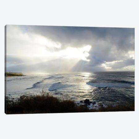 Divine Light Canvas Print #BNA9} by Bruce Nawrocke Canvas Art Print